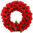 Stock Photo: Poppy day great remembrance war world flanders