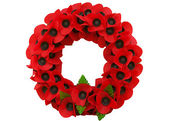 Poppy day great remembrance war world flanders — Stock Photo