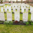 Stock Photo: Cemetery world war flanders fields Belgium