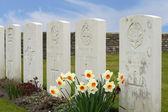New British Cemetery in flanders fields great world war — ストック写真
