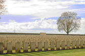 Wood Cemetery great world war one flanders Belgium — Stock Photo
