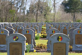Belgium world war one cemetery in the Depanne — Stock Photo