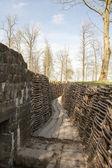 Bayernwald rowy wojny światowej jeden flanders belgium — Zdjęcie stockowe