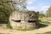 Bunker van de eerste wereldoorlog op heuvel 60 belgië — Stockfoto