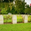 Tombstone Muslim soldiers killed in World War I — Stock Photo #46556935
