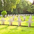 French cemetery from the First World War in Flanders belgium. — Stock Photo #46557299