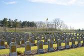 Belgium cemetery world war 1 fallen soldiers — Stock Photo