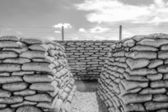 Trench of death world war 1 belgium flanders fields — Foto de Stock