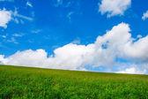 Groen veld in de bergen met romige wolken — Stockfoto