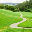 Winding country road between green fields in the mountains — Stock Photo #51505563