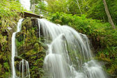 Fairytale waterfall in the black forest Germany Feldberg — Stock Photo