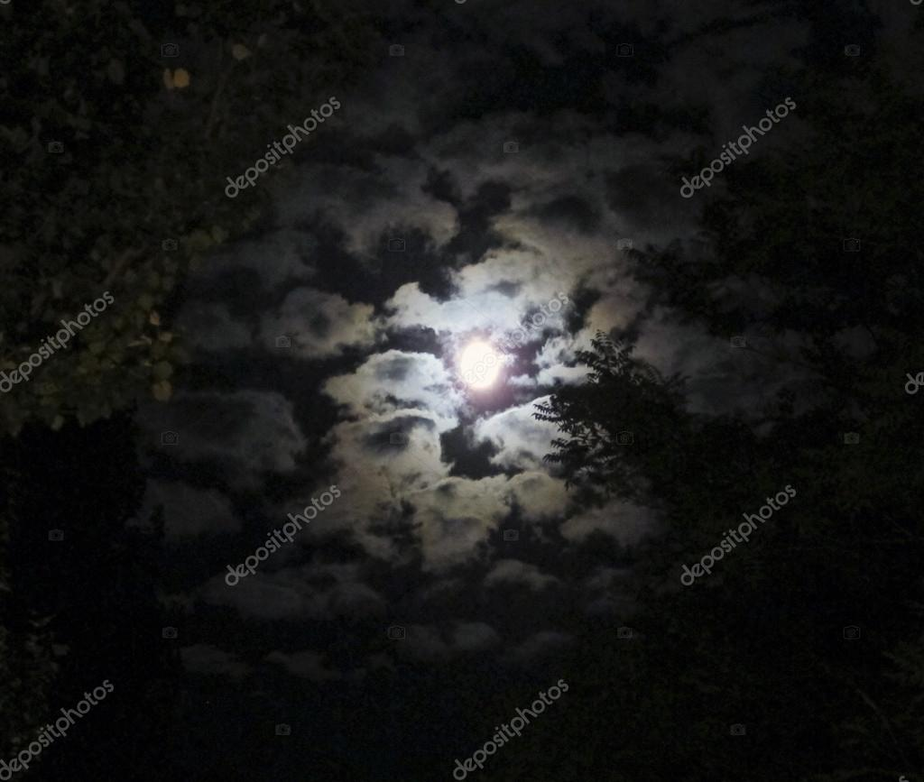 Moon in the clouds — Stock Photo #12719251