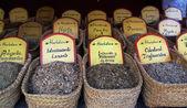 Medicinal herbs — Stock fotografie