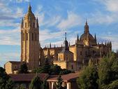 Segovia katedrali — Stok fotoğraf