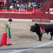 Bullfight — Stock Photo #33062393