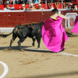 Bullfight — Stock Photo #33062647