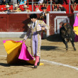 Bullfight — Stock Photo #33081809