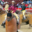 Bullfight — Stock Photo #33081861
