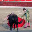 Bullfight — Stock Photo #36387793
