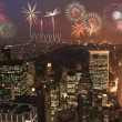 New york fireworks party — Stock Photo #30348261