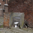 Public toilet — Stock Photo #12568959