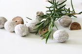 Composition of rosemary and nutmeg — Stock Photo