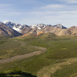 Scenic view Denali — Stock Photo #27942525