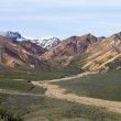 Scenic view Denali — Stock Photo #27942733