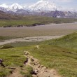 Mount mckinley — Stockfoto #27942807