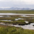 Tundra in alaska — Stock Photo #27943313