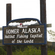 图库照片: Homer alaskhalibut fishing capital of world