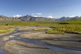 Scenic view Denali — Stock Photo