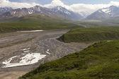 Scenic view Denali National Park — Stock Photo