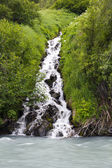Little waterfall — Stock Photo