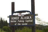 Homer alaska-heilbutt-angeln-hauptstadt der welt — Stockfoto