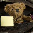 图库照片: Bear in old suitcase with pen and notebook