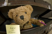 Bear with pencil and notebook announcing back to school — Stok fotoğraf