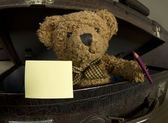 Bear in old suitcase with pen and notebook — Stok fotoğraf