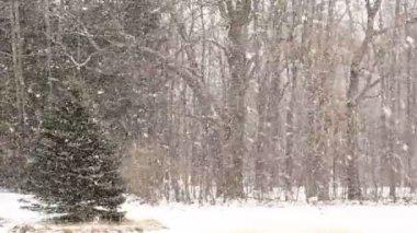 大きな雪の大雪. — ストックビデオ