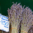 Stock Photo: Dried lavender at market