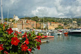 Port in small city of Santa Maria Liguria, Italy — Stock Photo