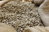 Sack of unroasted coffee — Stock Photo