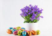 Easter eggs with spring flowers — Stock Photo