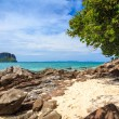 Royalty-Free Stock Photo: Bamboo island, Phi Phi