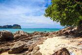 Bamboo island, Phi Phi — Stock Photo