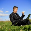 Businessman in the middle of the field on laptop — Stock Photo #15544643