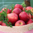 Stock Photo: Red apples basket