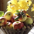 Apple basket — Stock Photo #13685882