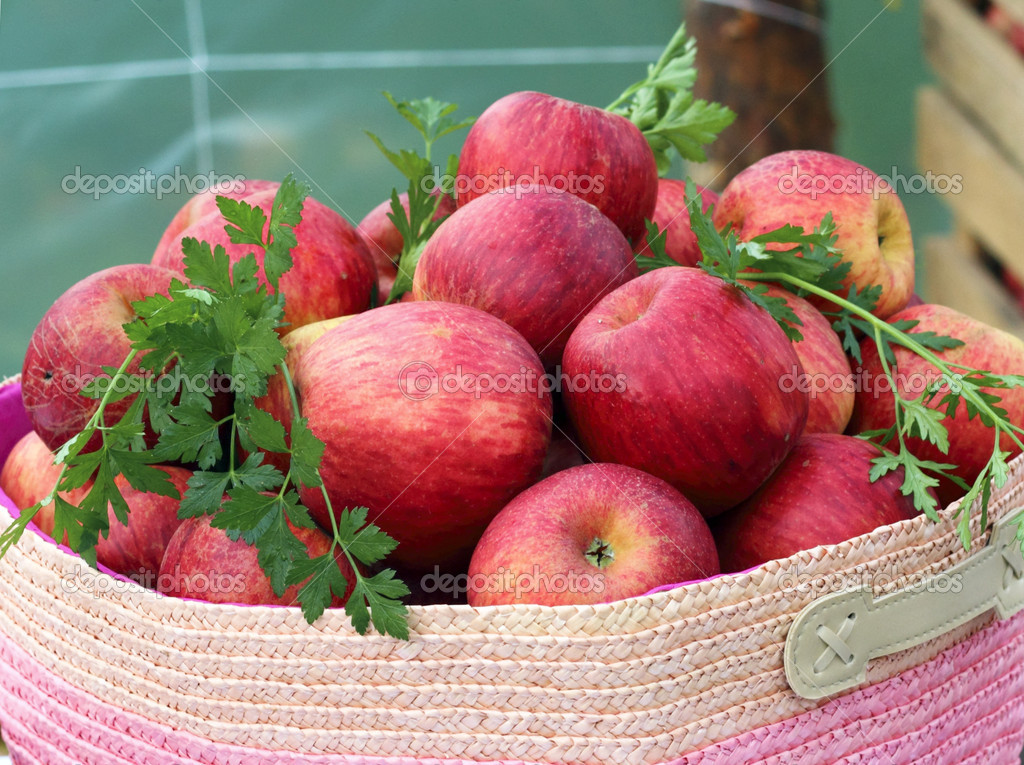 Ecologically grown red apples stacked in a basket  Stock Photo #13685878