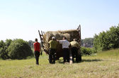 Haymaking — Foto Stock